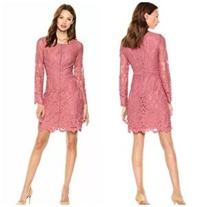 NWT Cupcakes Cashmere Makenna Fitted Lace Dress M